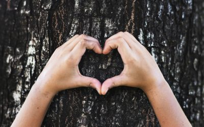 7 spôsobov, ako šetriť životné prostredie a peňaženku